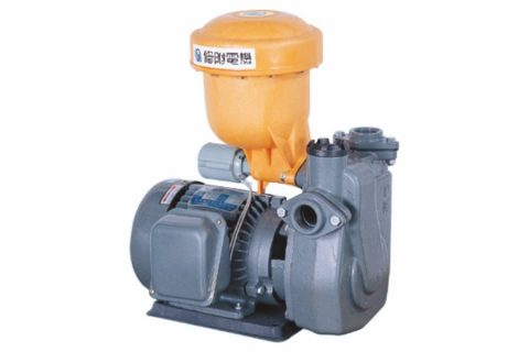 SPA-112A (1HP), Automatic Booster Pump